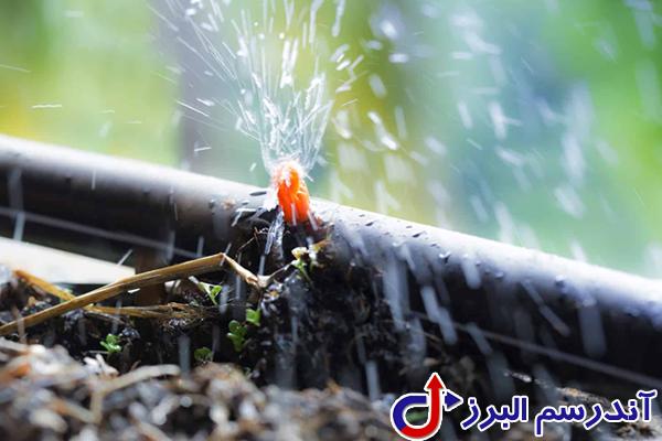 تجهیزات گلخانه -آبیاری قطره ای گلخانه- آندرسم البرز