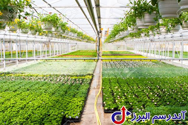 تجهیزات گلخانه -آبیاری گلخانه- آندرسم البرز