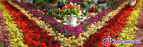 تجهیزات گلخانه -حمایتهای دولتی از گلخانه- آندرسم البرز